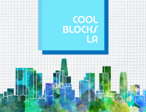 Call for Cool Blocks LA Leaders