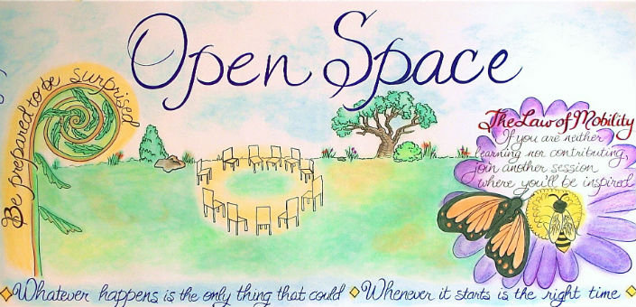 Photo Credit: The Blue Room; MaryAnn McKibben Dana;  Image: the rules of Open Space.