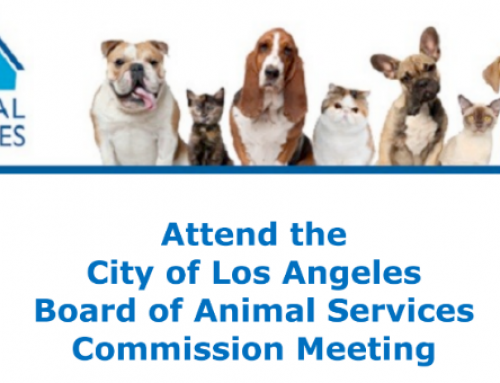 Invitation to LA Board of Animal Services Commission Meeting on 7/26/16