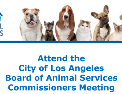 Invite to LA Animal Services Commission