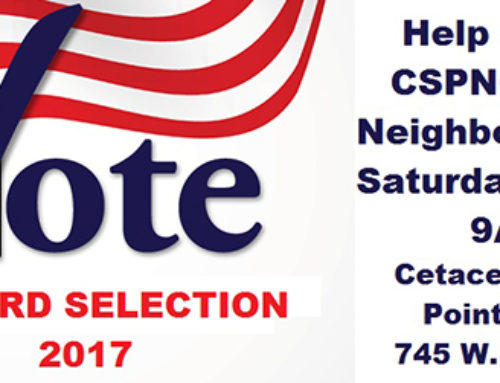 2017 Coastal San Pedro Neighborhood Council Selection