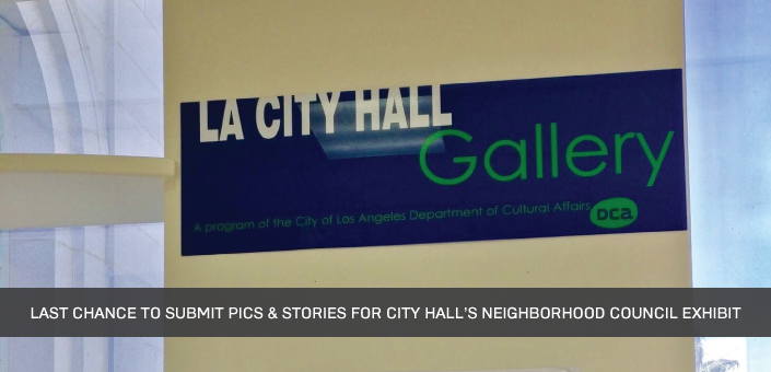 Submit your photos & stories for City Hall's Neighborhood Council exhibit by June 30th