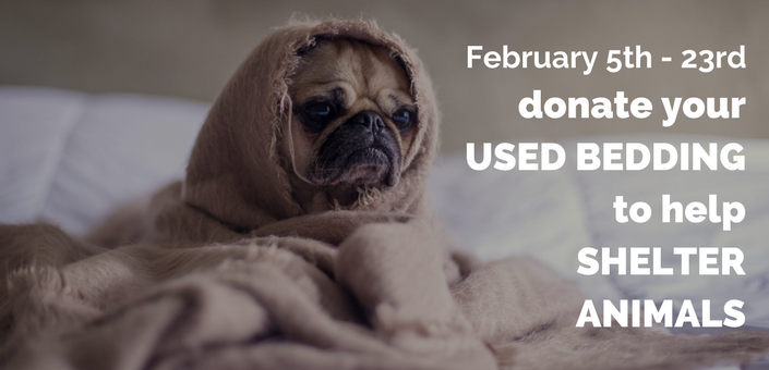 LA Sanitation's 2018 Used Linen Drive collects used bedding for animals in LA Animal Services shelters
