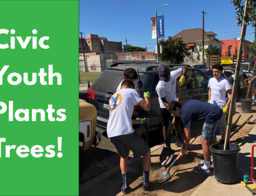 Civic Youth Success Story – Neighborhood Tree Planting!