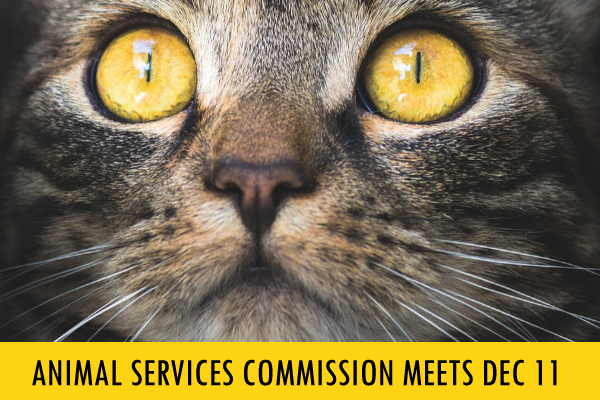 You're Invited! Board of LA Animal Services Commissioners Meeting at Ramona Hall