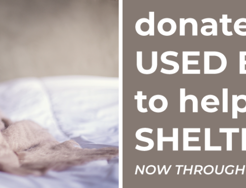 Donate Your Used Bedding to Help Shelter Pets