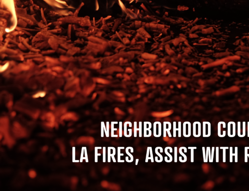 Neighborhood Councils Respond to LA Fires, Assist With Recovery Efforts