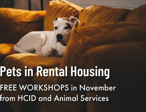 Pets in Rental Housing – FREE WORKSHOPS: November 2019